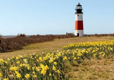 lighthouse on Nantucket Luxurious Harbor View Cottage Walk to everything23