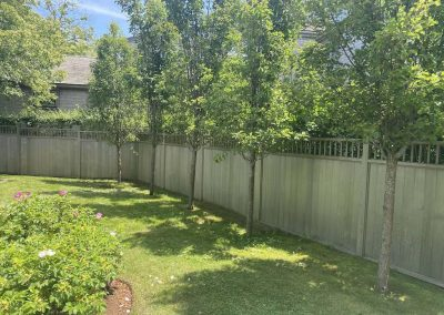 back yard of Nantucket Rental
